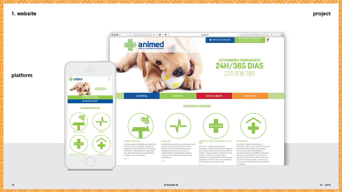 WEB20140072-ANIMED-Website-Presentation_13