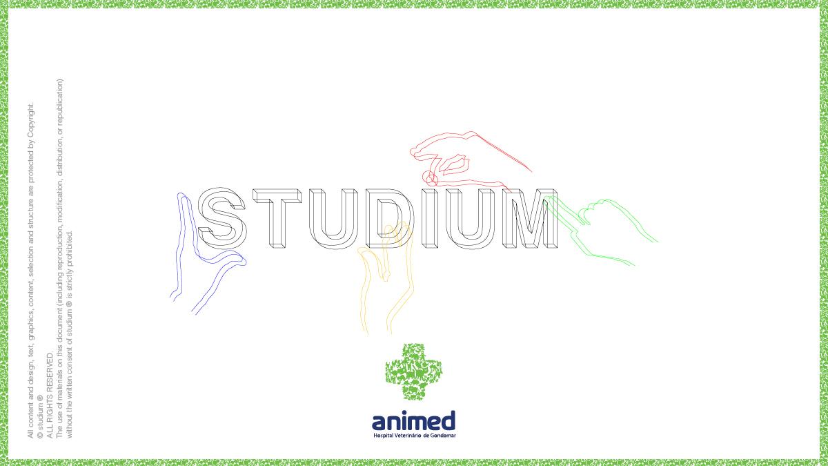 WEB20140072-ANIMED-Website-Presentation_16