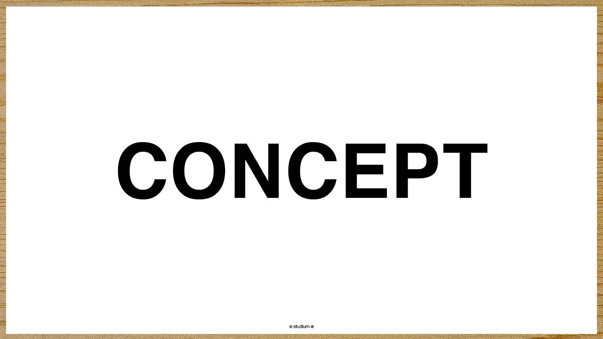 WEB20130055-LARICOTTA-Website-Presentation_07