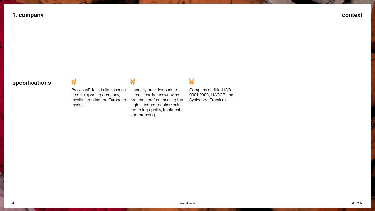 WEB20140051-PRECISIONELITE-Website-Presentation_04