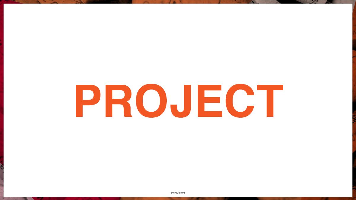 WEB20140051-PRECISIONELITE-Website-Presentation_10