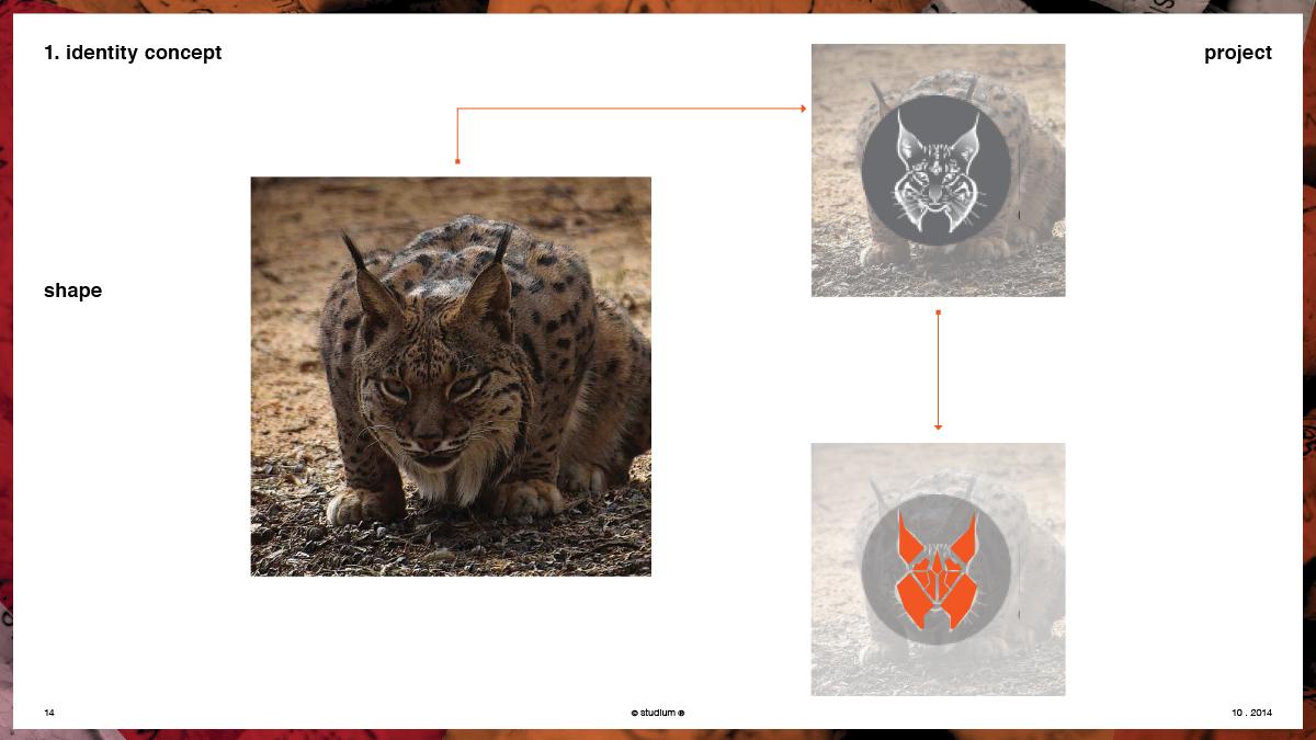 WEB20140051-PRECISIONELITE-Website-Presentation_14