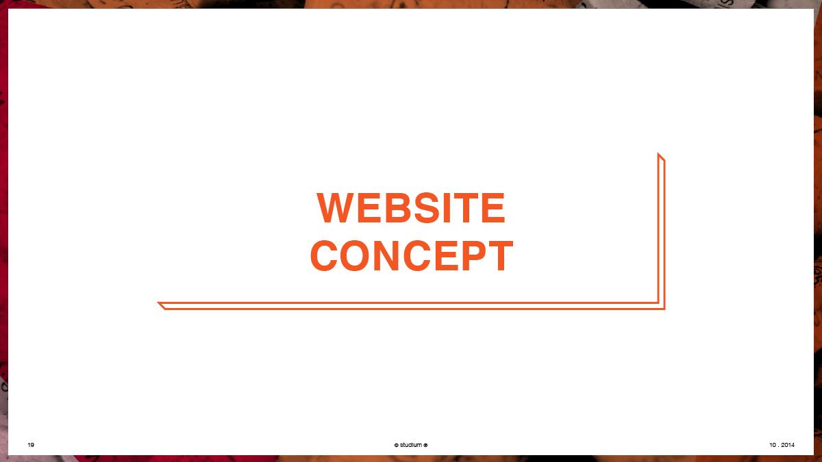 WEB20140051-PRECISIONELITE-Website-Presentation_19