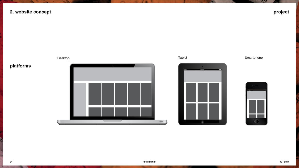 WEB20140051-PRECISIONELITE-Website-Presentation_21