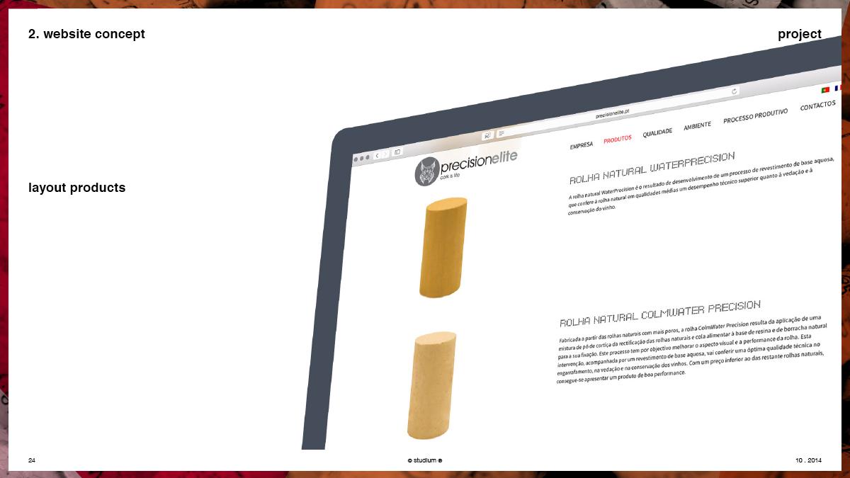 WEB20140051-PRECISIONELITE-Website-Presentation_24