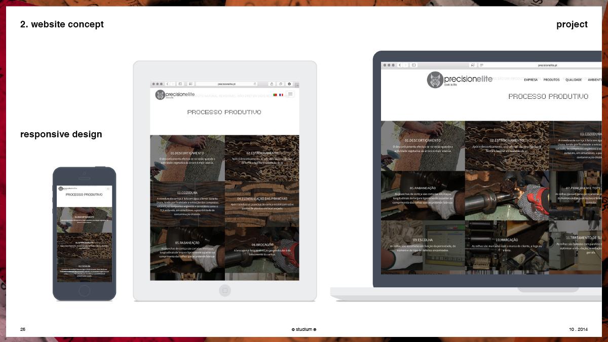 WEB20140051-PRECISIONELITE-Website-Presentation_25