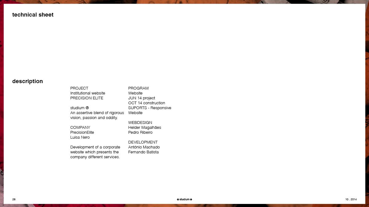 WEB20140051-PRECISIONELITE-Website-Presentation_26