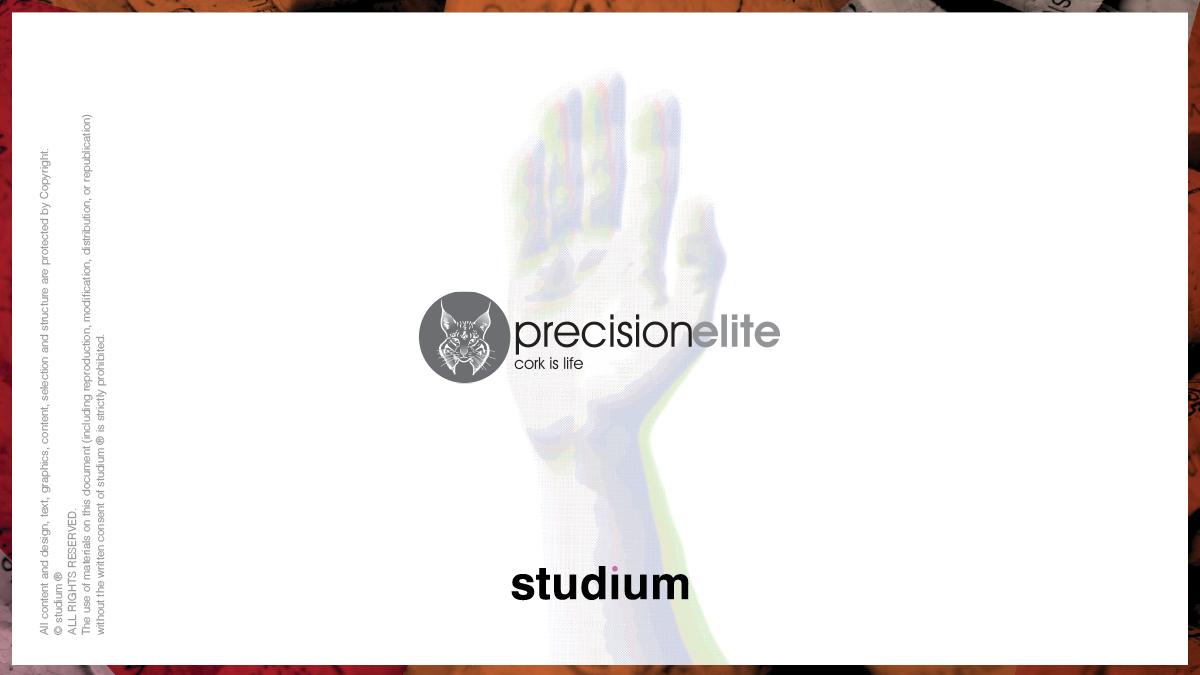 WEB20140051-PRECISIONELITE-Website-Presentation_27